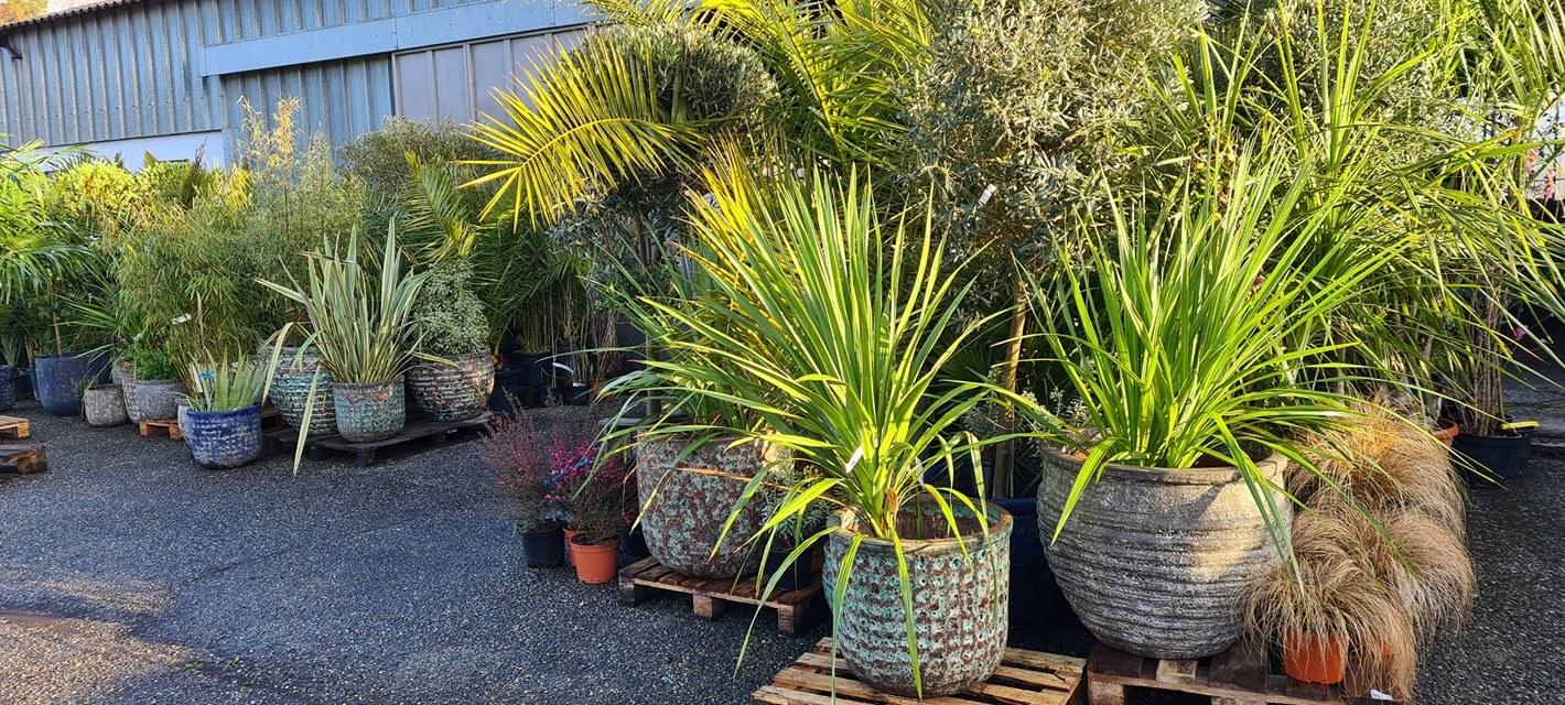 Horticulture Texeraud
